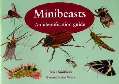 The Minibeast Guide Cover